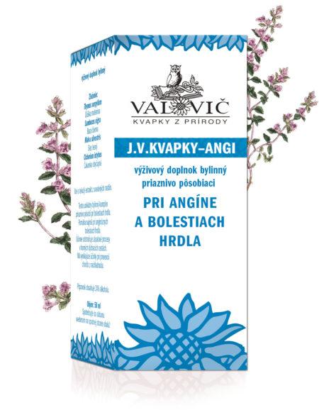 J.V.Kvapky - ANGI